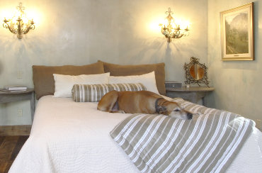 Accommodation search