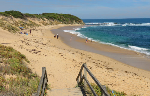Dog Friendly Beaches Mallacoota