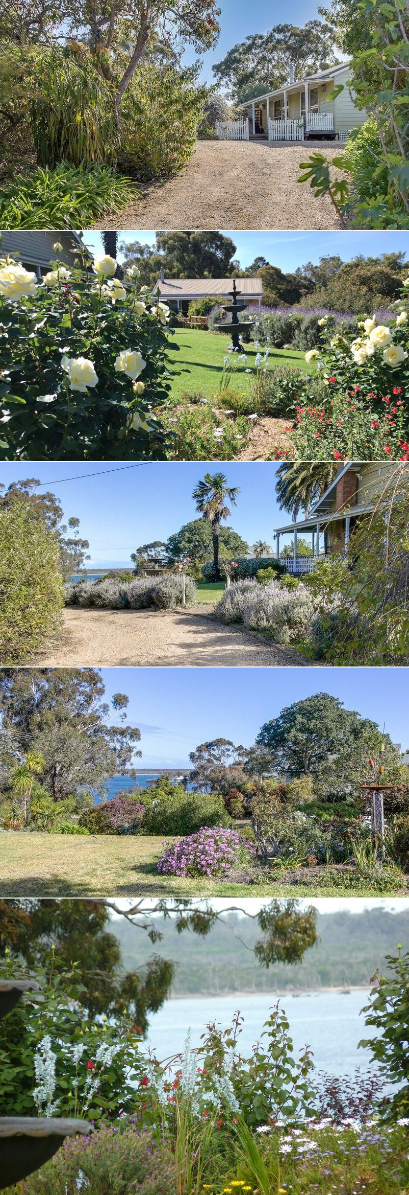 Clovelly Cottage - The grounds