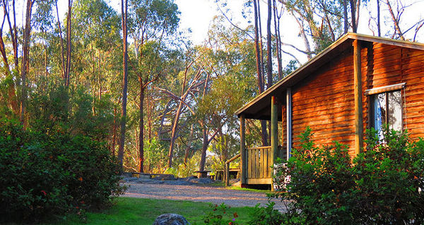 Woolshed Cabins, Beechworth