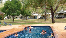 Echuca dog friendly caravan parks & holiday parks - Dogs On
