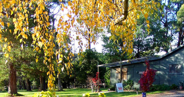 Redwoods Cottage, Healesville